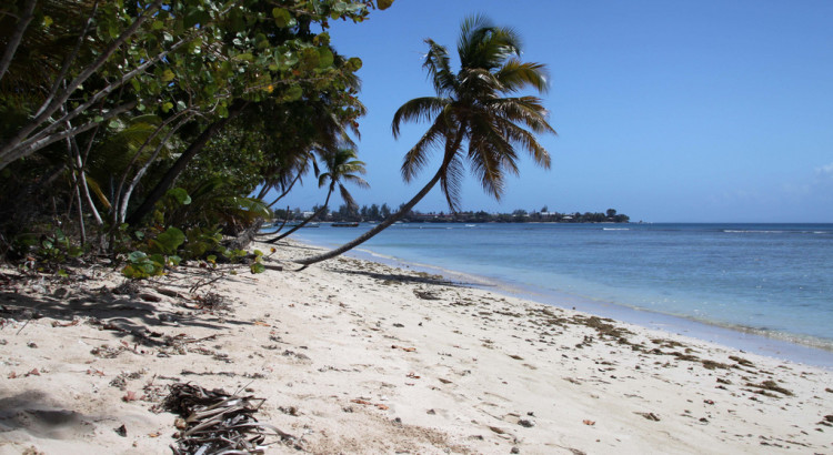 Pigeon Point, Tobago by neiljs, on Flickr